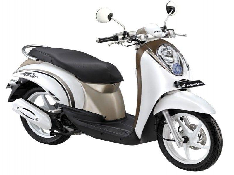 Rent Scooter Kerobokan | Scoopy