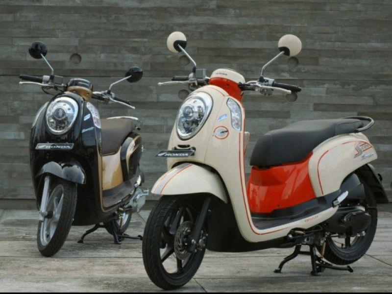 Scooter Rental Bali | Honda Scoopy