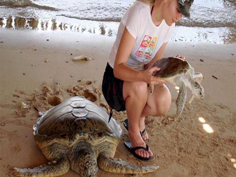 Bali Turtle Island Tour