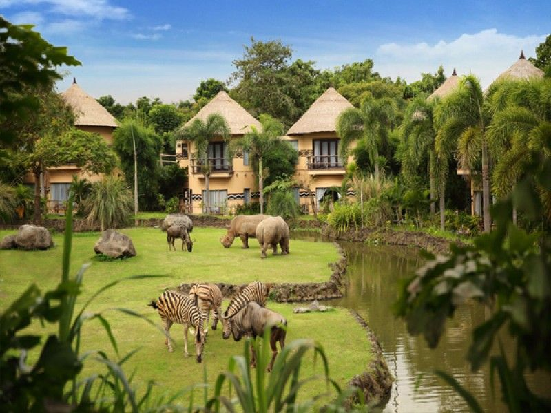 Bali Safari & Marine Park | Jungle Hooper