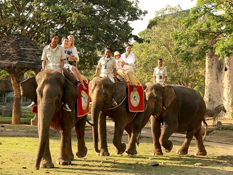 Bali Safari Park | Elephant Ride